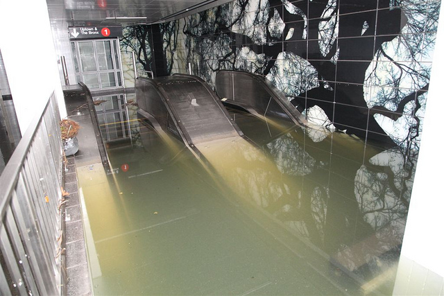 The South Ferry station in Lower Manhattan filled with 25 meters of water from Superstorm Sandy. Researchers recently found 10 bacterial species usually found in cold aquatic environments still present in the station.  Credit: MTA